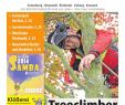 Apotheke Zoologischer Garten Elegant Amadeus 14 2014 by Amadeus Verlag issuu