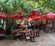 Asia Garten Holzminden Einzigartig Restaurants Near Silberborn Lower Saxony Tripadvisor
