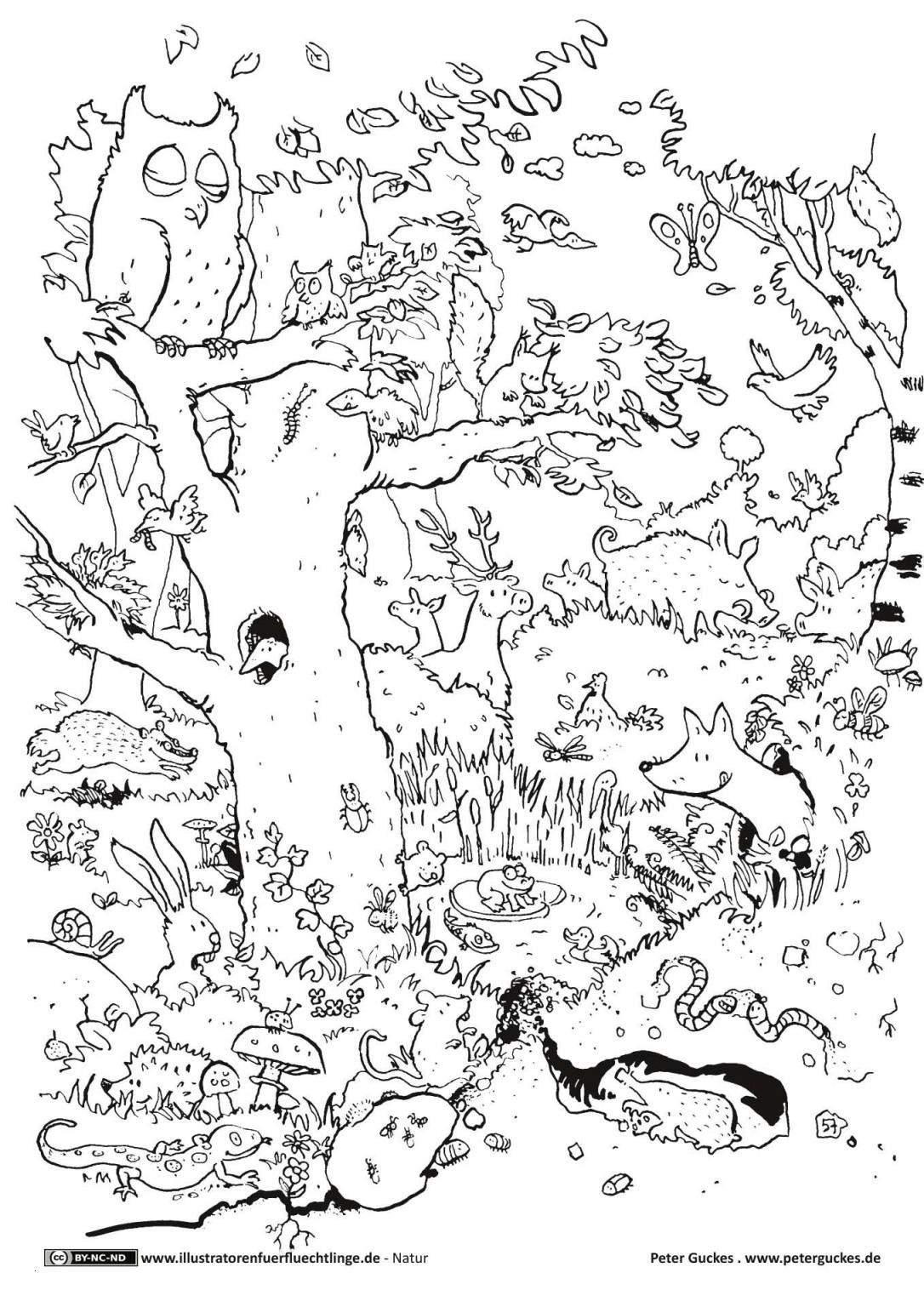ausmalbilder tiere zoo ac288c29a ausmalbilder tiere mit buchstaben of ausmalbilder tiere zoo