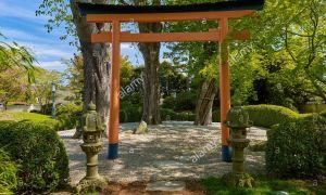 28 Inspirierend Bad Langensalza Japanischer Garten Frisch