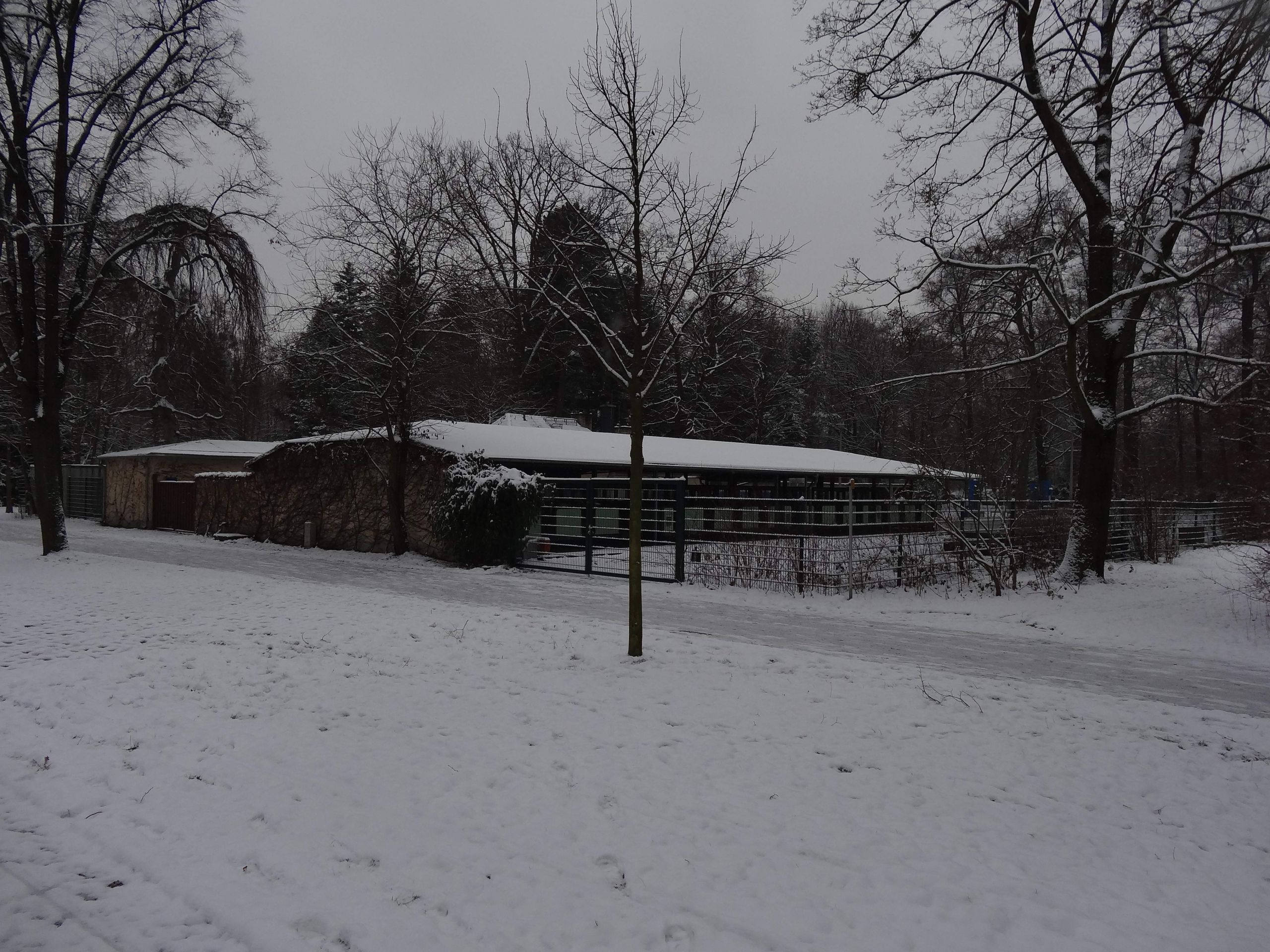 Dresdner Parkeisenbahn Depot am Bahnhof Zoo %