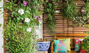 30 Das Beste Von Balkon Garten 24 Luxus