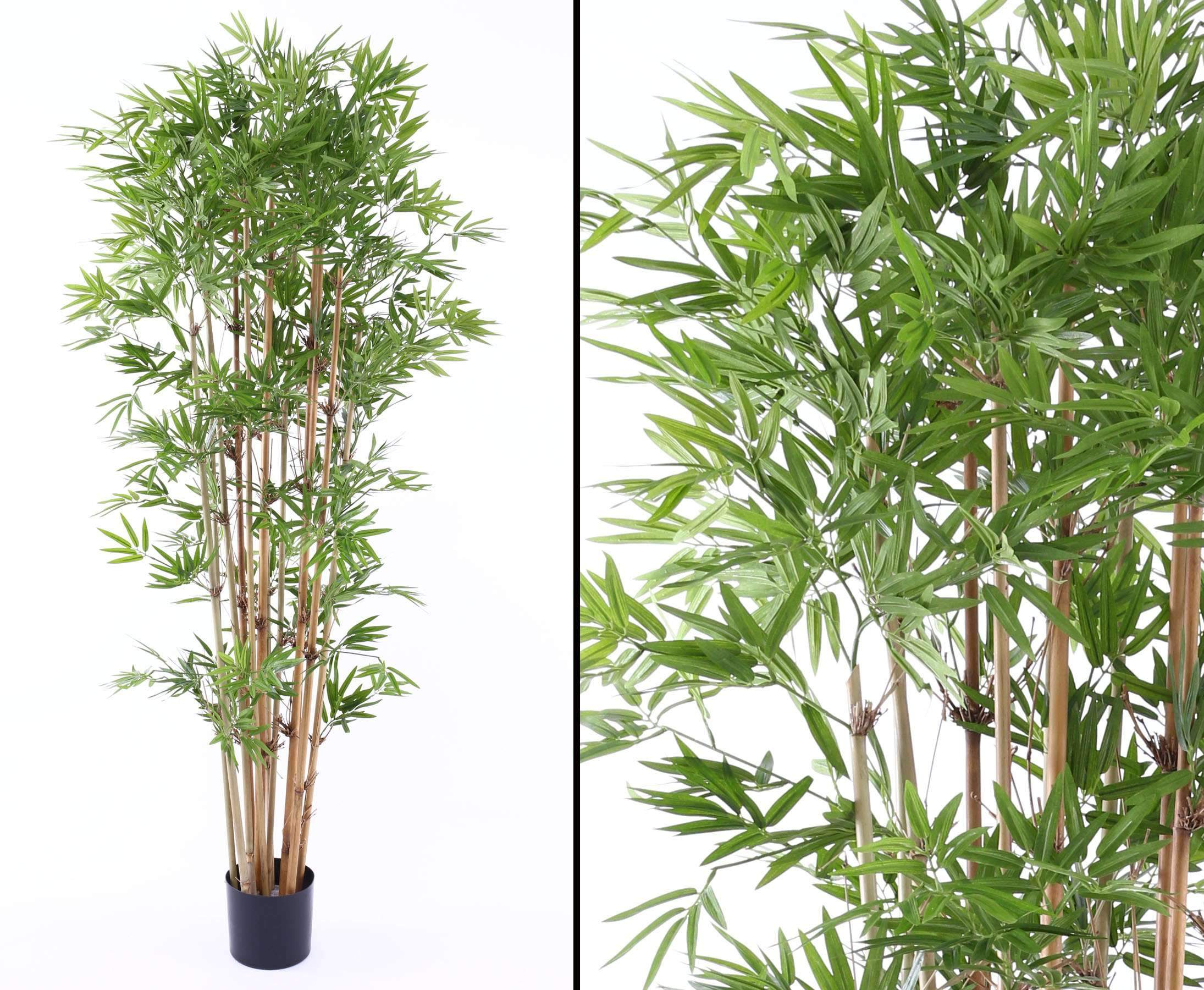 Bambus mit 2400 textilen Blaettern und Naturstaemmen Hoehe 180cmfD6p0lWbUdzxp 1280x1280 2x
