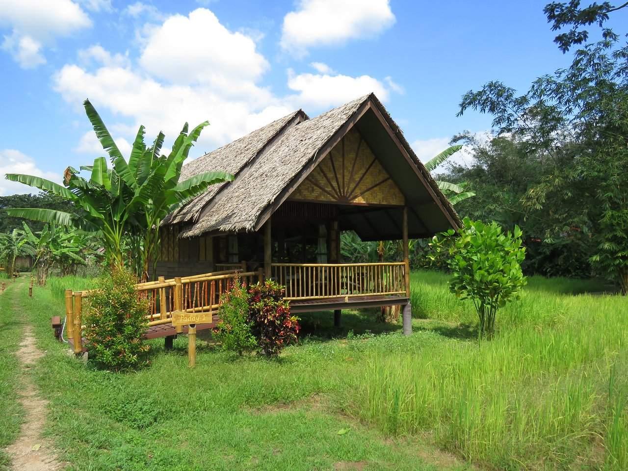 our jungle camp eco resort