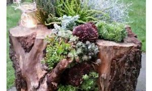 31 Inspirierend Baumstamm Dekorieren Garten Einzigartig