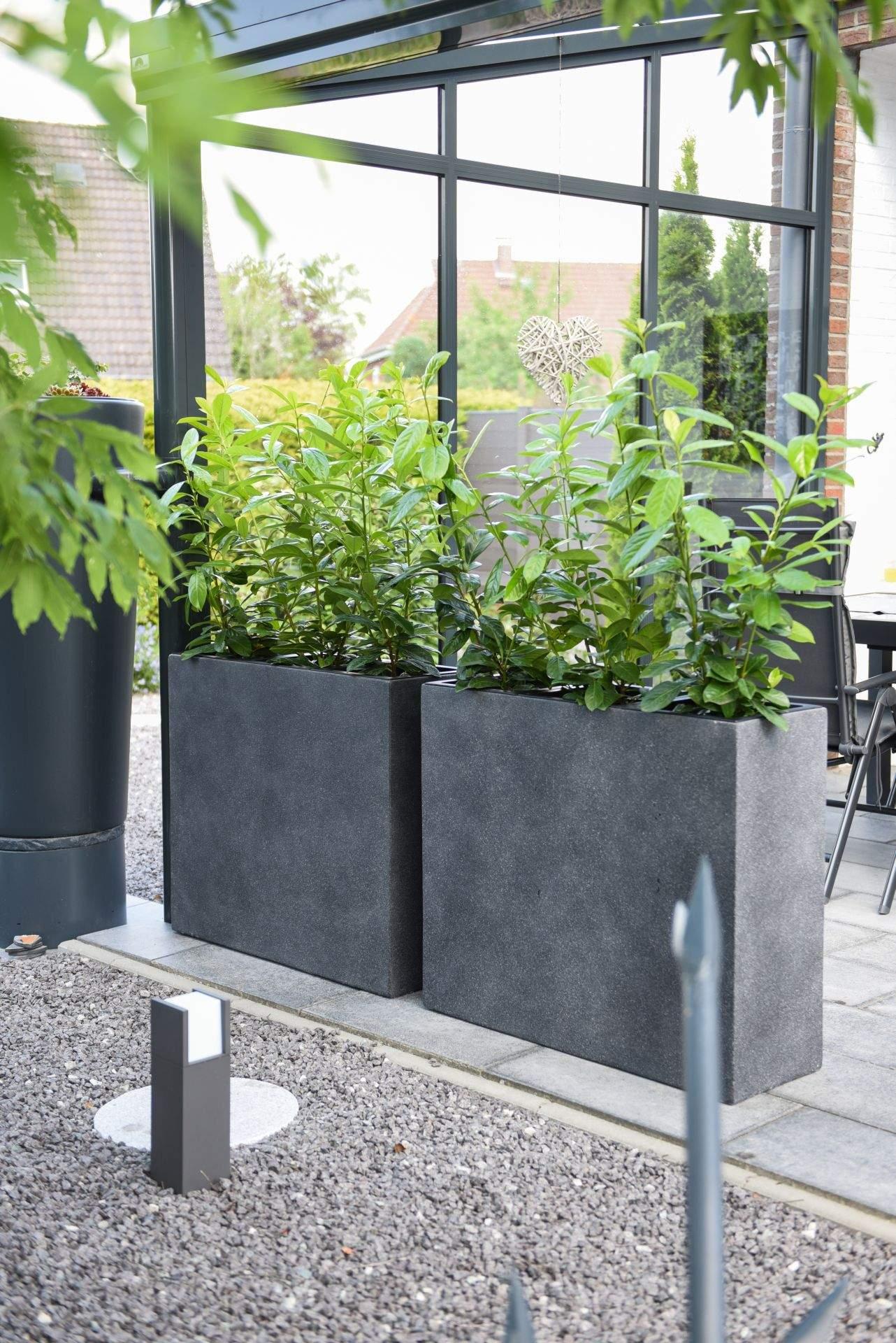 pflanzkuebel raumteiler sichtschutz beton anthrazit elemento 88 4 1