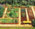 Bett Im Garten Das Beste Von Gemüse Garten Bett Ideen Gartendeko