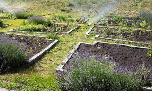 26 Einzigartig Bewässerung Garten Selber Bauen Inspirierend