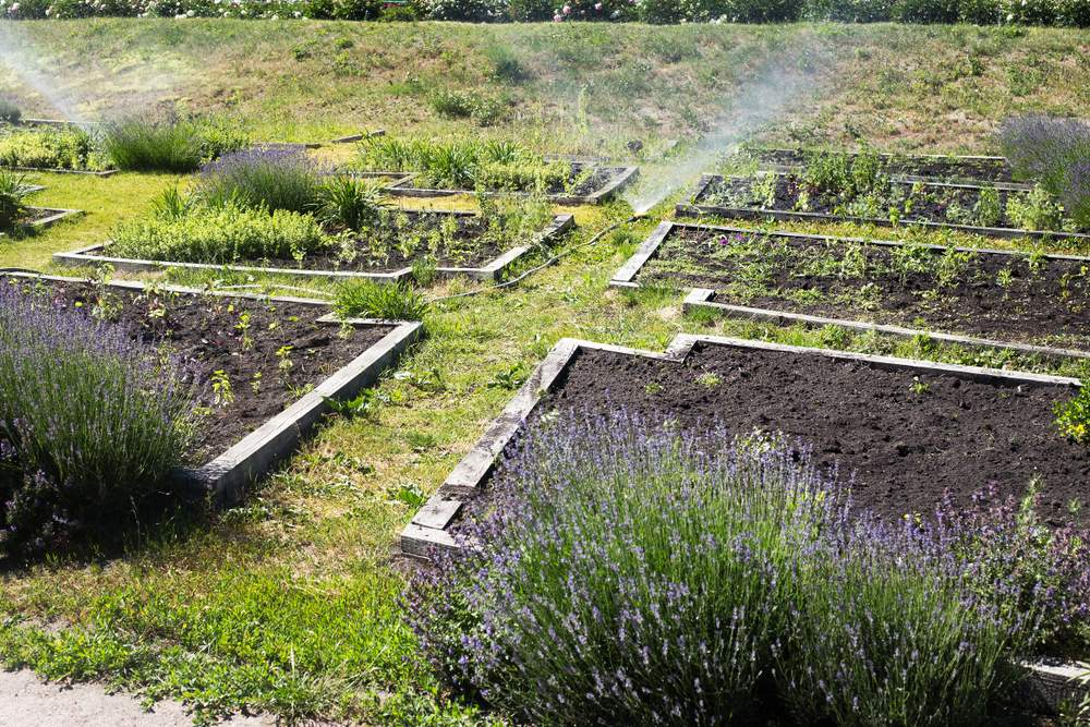 Bewässerung Garten Selber Bauen Elegant Bewässerung Für Den Garten Selber Bauen Die Besten Ideen
