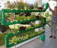 Bewässerung Garten Selber Bauen Genial Simsalatube Bewässerung