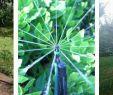 Bewässerung Garten Selber Bauen Neu Bewaesserungsanlage Bauen Gartenbewaesserung Regenmeister