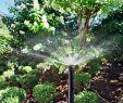 Bewässerungsanlage Garten Frisch Automatische Bewässerungsanlage Gärtnerei Schneider Gbr
