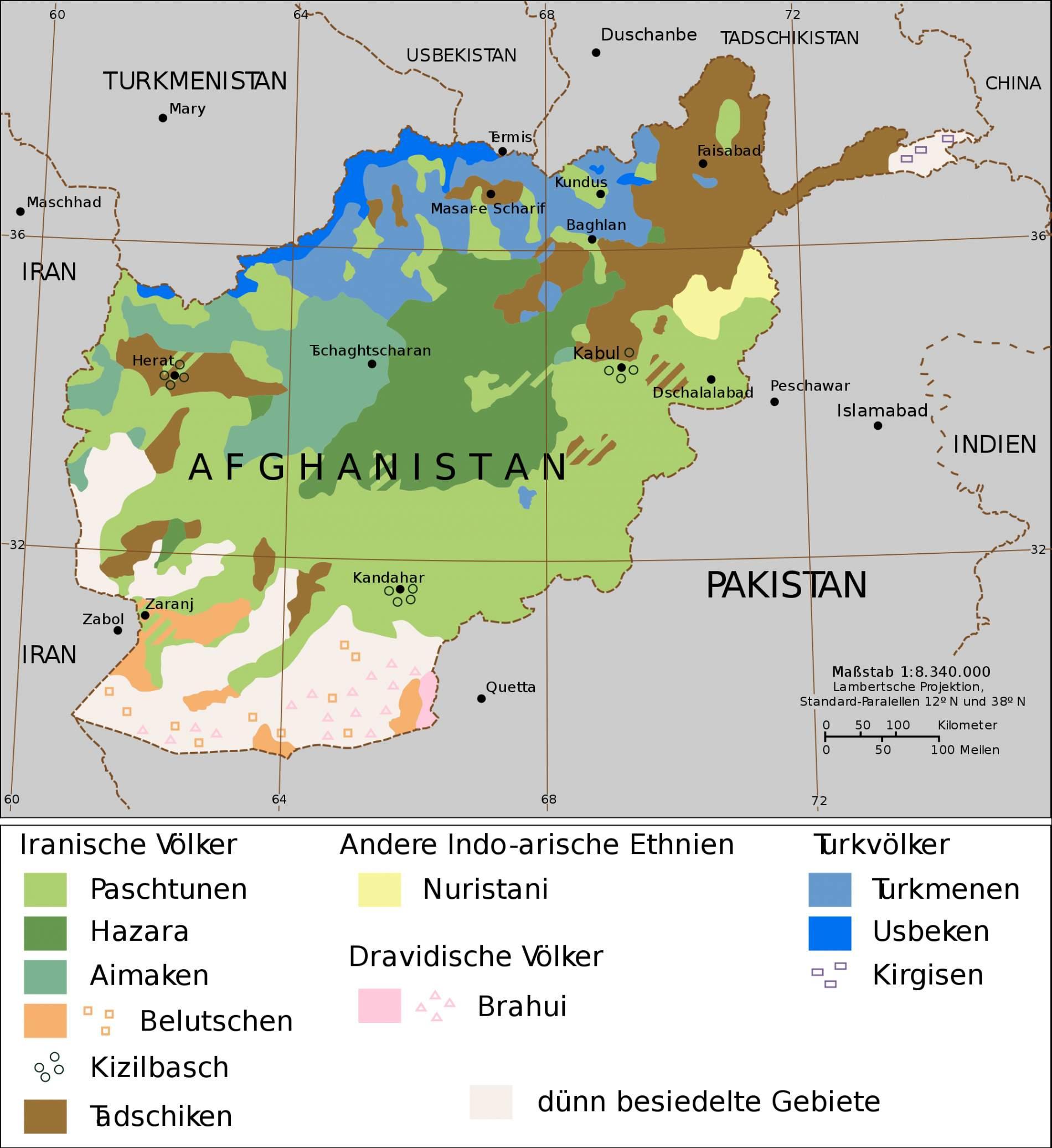afghanistan straucher als sichtschutz zum nachbarn straucher als sichtschutz zum nachbarn