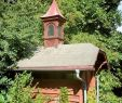 Bienenvolk Im Garten Frisch Amberg Sulzbacher Land Honig Aus Dem Amberg Sulzbacher