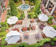 Biergarten Englischer Garten Frisch Die Besten Restaurants Zum Mittagessen In München