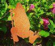 Blumenwiese Im Garten Einzigartig Guten Morgen🙋♀️💕 Schaut Mal Wen Ich Im Garten Gefunden