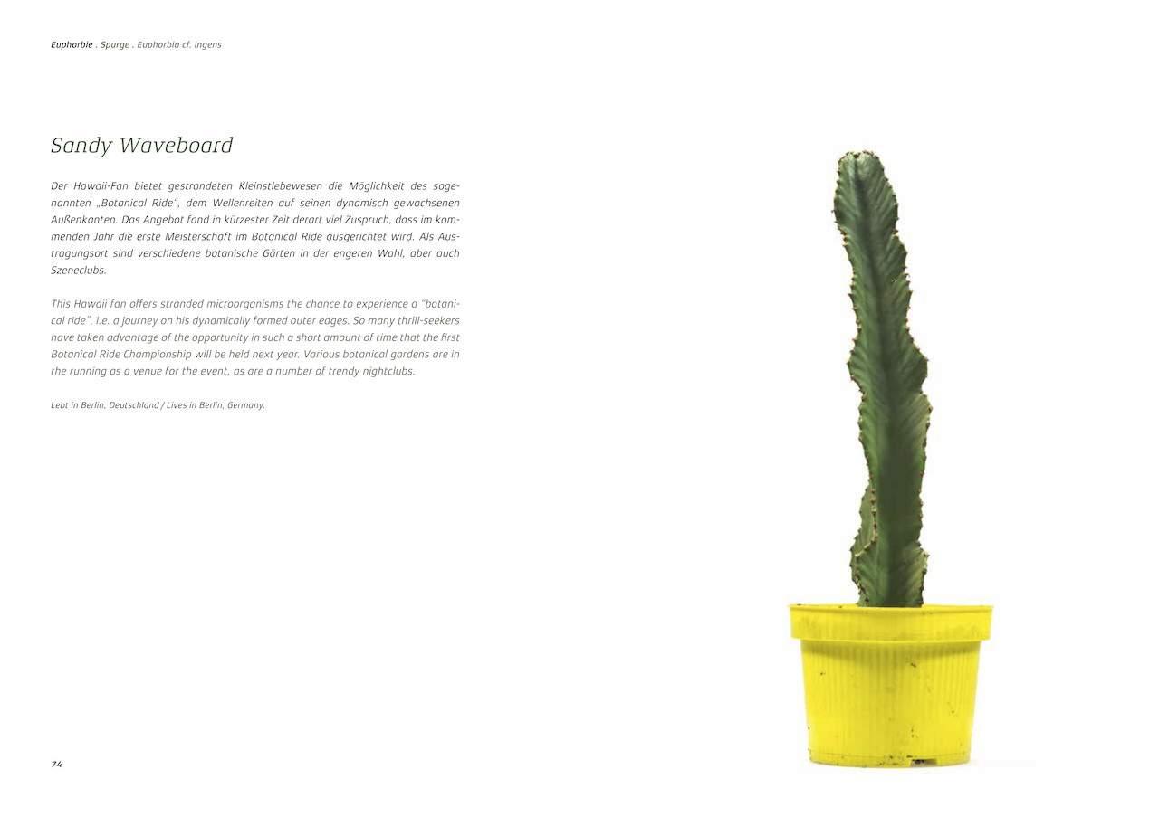 Urban Plants d 1280x1280