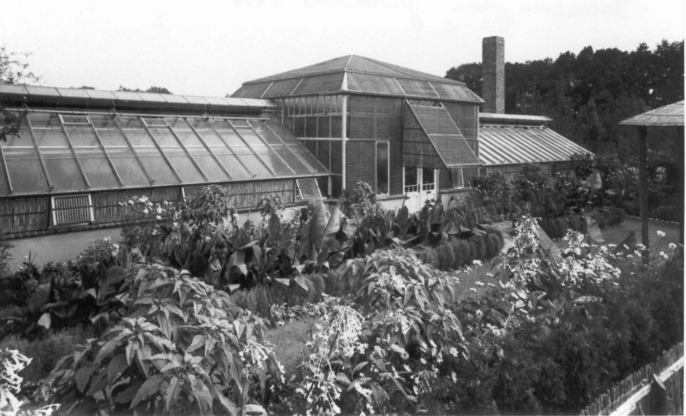Botanische Garten Berlin Reizend Palmenhaus Gütersloh