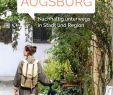 Botanischer Garten Augsburg Schmetterlinge Das Beste Von Calaméo Augsburg Guide 2019