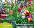 Botanischer Garten Augsburg Schmetterlinge Luxus Cfcfcfcfecefcefy by Elcicario43 issuu