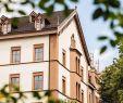 Botanischer Garten Basel Einzigartig Die 10 Besten Hotels Nahe Mittlere Brücke Basel Tripadvisor