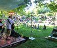 Botanischer Garten Berlin Kommende Veranstaltungen Das Beste Von Naturfreunde Ulm