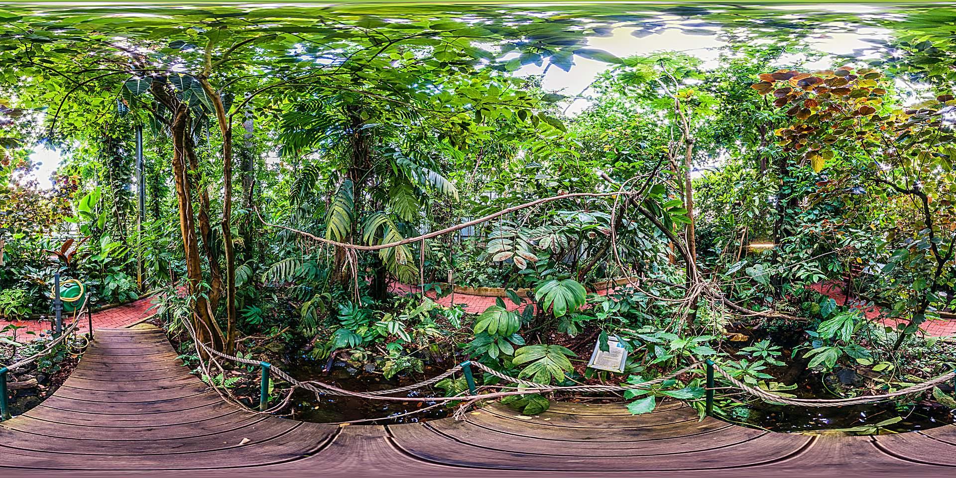 botanischer garten marburg gewaechshaeuser