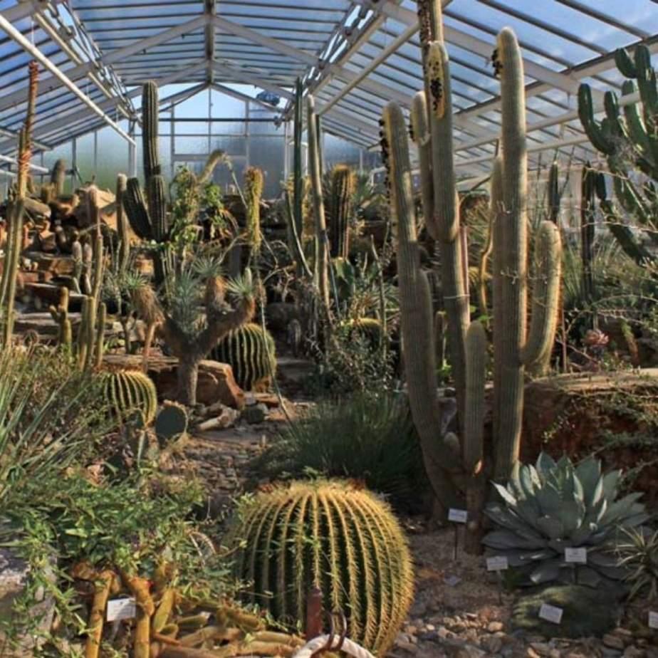 botanischer garten nymphenburg
