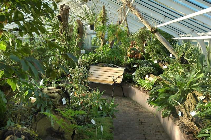 botanischer garten berlin dahlem