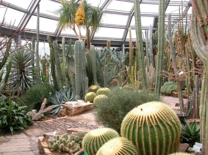 botanischer garten und botanisches museum berlin dahlem preise und oeffnungszeiten