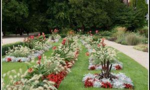 36 Reizend Botanischer Garten Berlin öffnungszeiten Inspirierend