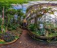 Botanischer Garten Berlin öffnungszeiten Neu Botanischer Garten Darmstadt Tropenhaus Botanischer Garten