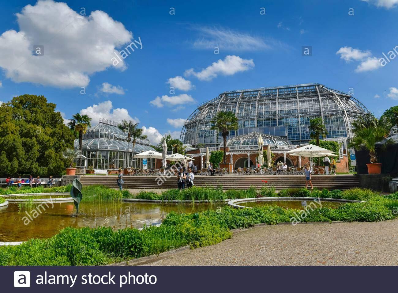 Botanischer Garten Berlin Steglitz Inspirierend Großes Tropenhaus Botanischer Garten Königin Luise Straße