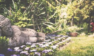 32 Schön Botanischer Garten Gardone Luxus