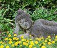 Botanischer Garten Gardone Das Beste Von Statue andre Stockfotos & Statue andre Bilder Alamy