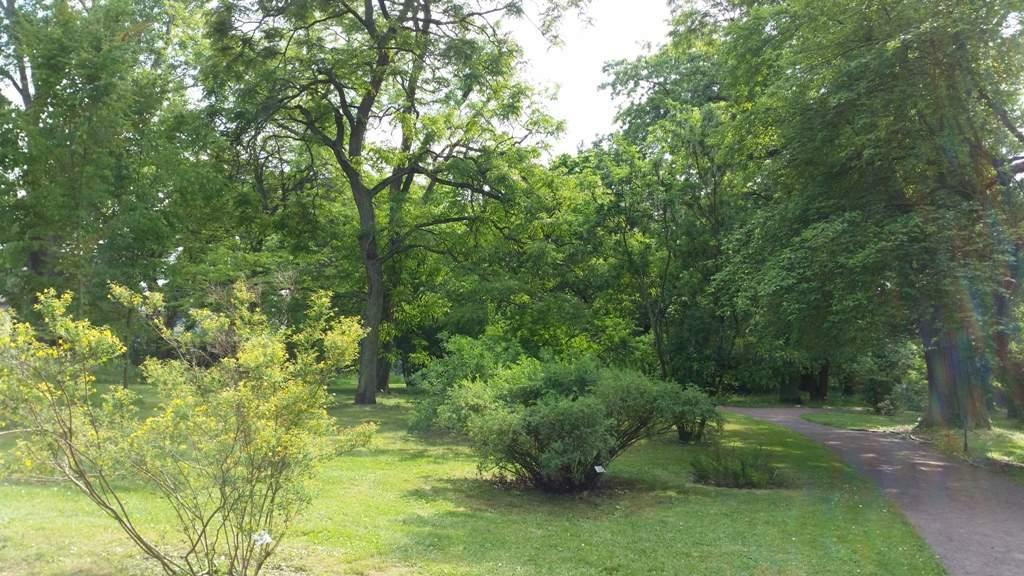 Botanischer Garten Halle öffnungszeiten Das Beste Von Botanischer Garten Halle Saale
