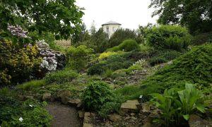 33 Genial Botanischer Garten Halle öffnungszeiten Neu