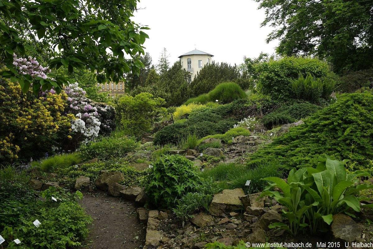 Botanischer Garten Halle öffnungszeiten Elegant Botanischer Garten In Halle An Der Saale