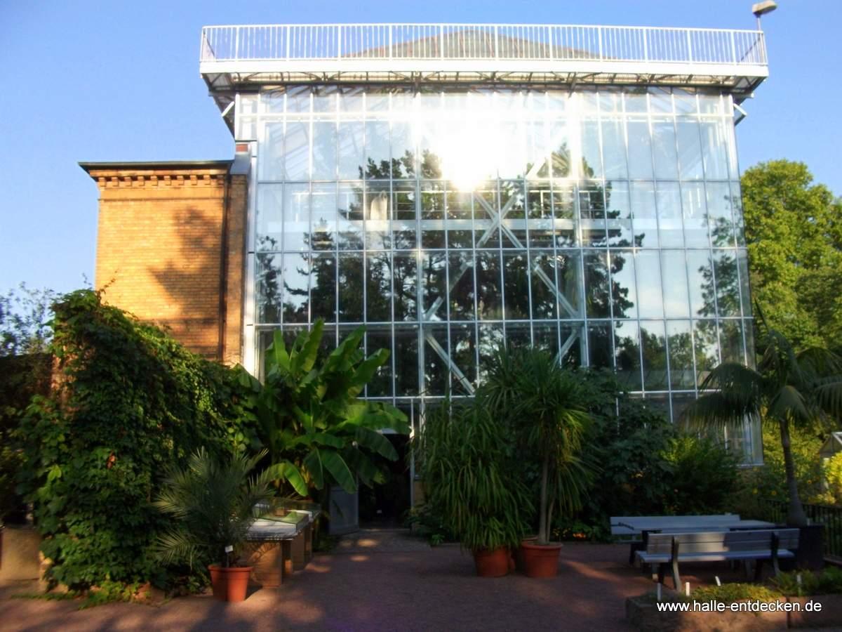 Botanischer Garten Halle öffnungszeiten Elegant Botanischer Garten In Halle Saale Entdecken