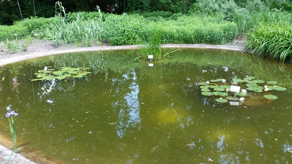 Botanischer Garten Halle öffnungszeiten Frisch Botanischer Garten Halle Saale