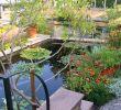Botanischer Garten Halle öffnungszeiten Frisch Botanischer Garten In Halle Saale Entdecken