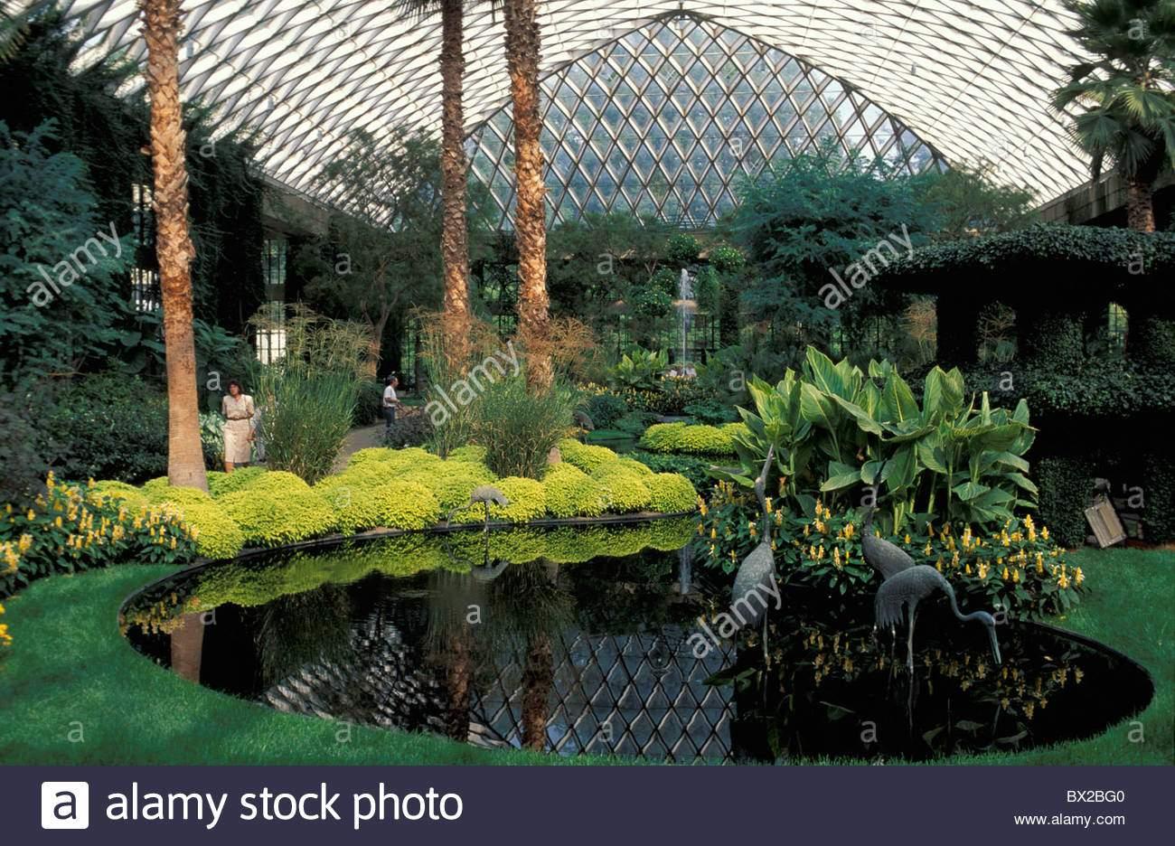 stockfoto botanischer garten halle halle im inneren teich pflanzen gewachshaus longwood garten wissen square pennsylvania usa