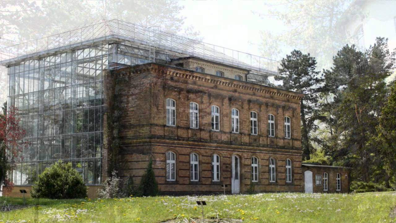 Botanischer Garten Halle öffnungszeiten Luxus Botanischer Garten In Halle Saale Sachsen Anhalt Germany
