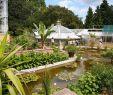 Botanischer Garten Halle öffnungszeiten Neu Botanischer Garten Kultur Und Freizeit