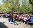 Botanischer Garten Karlsruhe Schön Loschter Handkeesfescht –
