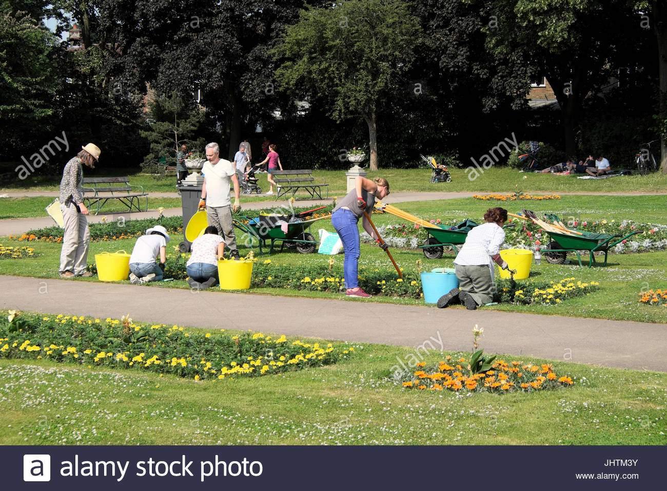 freiwilligen sie gartner im garten draussen im sommer an der william morris gallery park walthamstow east london uk kathy dewitt jhtm3y
