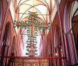 Botanischer Garten Münster Das Beste Von Bin Mal In Der Spur Das Buchkaleidoskop Meine