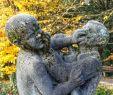 Botanischer Garten Nymphenburg Elegant Munich Germany München Deutschland