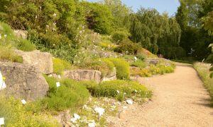 36 Das Beste Von Botanischer Garten Palermo Luxus