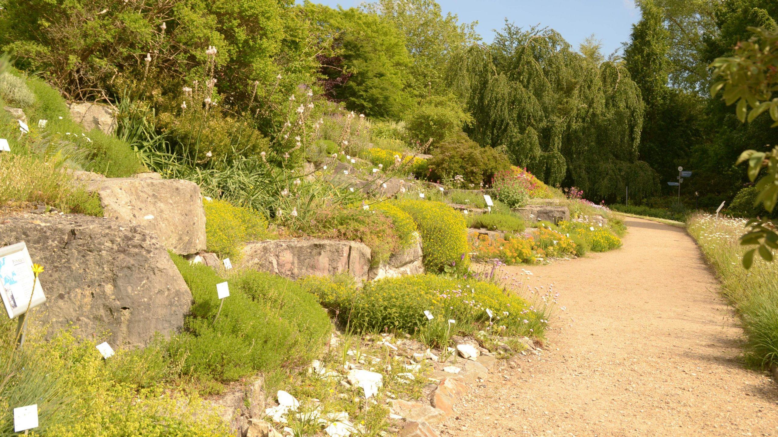 Botanischer Garten Palermo Das Beste Von Bot Garten